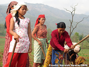 nepal brides
